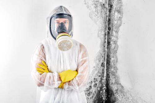 las vegas mold removal technician